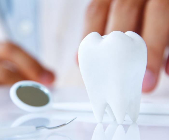 Бесплатные услуги у частного стоматолога